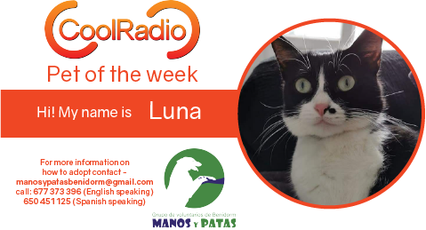 Pet of the week luna.png (79 KB)